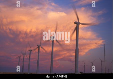 Windmühlen in Stateline-Wind-Projekt mit einer hellen Wolke hinter Stromerzeugung. Sonnenuntergang. Walla Walla - Stockfoto