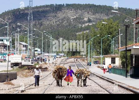 Ein paar, die Bereitstellung von Holz mit Maultieren macht seinen Weg entlang der Bahngleise in Creel Mexiko ein - Stockfoto