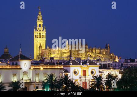 Ring-Kathedrale mit Giralda, Plaza de Toros, Stierkampf, Stadtbild, Sevilla, Andalusien, Spanien - Stockfoto