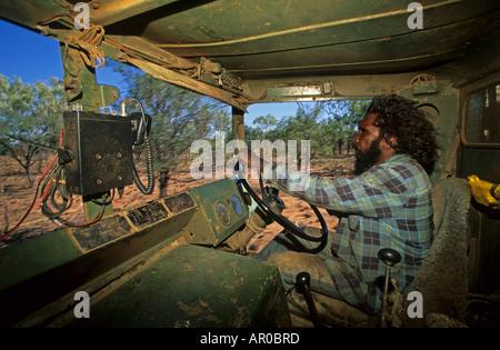 Aboriginal Stockmen Autofahren, fangen wilde Stiere, Gibb River Station, Kimberley, Western Australia, Australien - Stockfoto