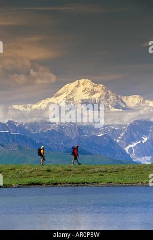 Wanderer auf Tundra in Denali State Park SC Alaska Sommer w/Mt McKinley Hintergrund - Stockfoto
