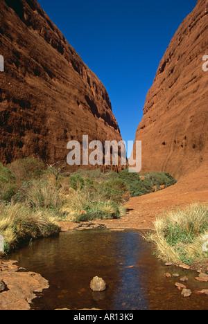 Walpa Gorge, die Olgas, Kata Tjuta National Park, Northern Territory, Australien. - Stockfoto