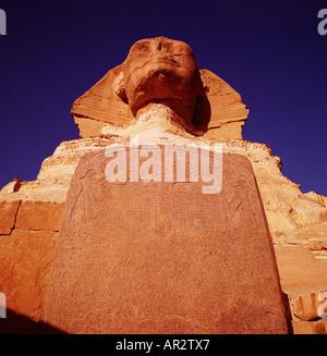 Die Sphinx in Ägypten, Gizeh, Kairo, Nord Afrika. Dramatische Nahaufnahme bei Sonnenaufgang, Birds Eye View suchen - Stockfoto