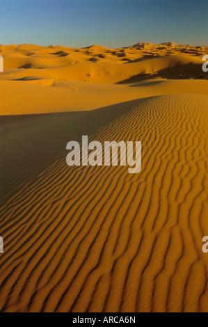Sanddünen des Erg Chebbi, Sahara Wüste in der Nähe von Merzouga, Marokko, Nordafrika, Afrika - Stockfoto