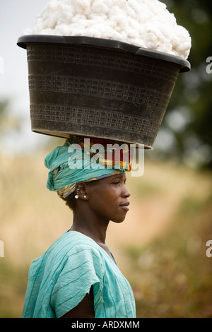 Fairtrade-Landwirt Baumwollfeldern in Mali, Afrika - Stockfoto