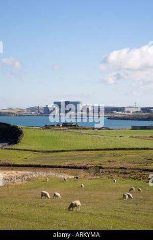 Kernkraftwerk WYLFA über Cemlyn Bucht von Isle of Anglesey Küsten Weg Cemlyn Bay durch Felder von weidenden Schafen - Stockfoto
