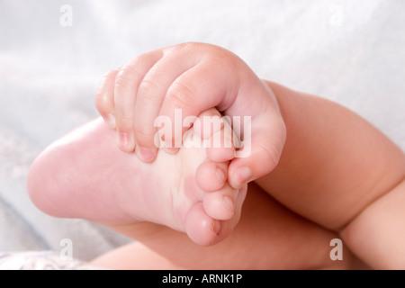 Studioportrait Nahaufnahme von Babys Hand hielt seinen Fuß - Stockfoto