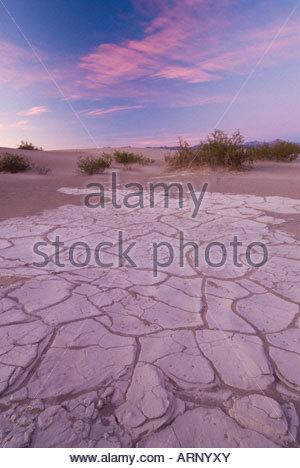 Gebrochene Schlamm in den Mesquite flache Sanddünen, Death Valley Nationalpark, Kalifornien, USA. - Stockfoto