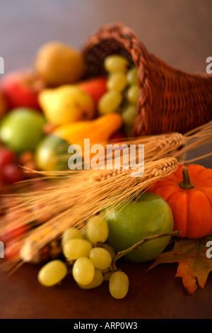 Herbst-Ernte Stockfoto