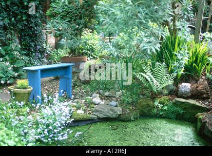 Blauen Bank und Farne und kleiner Baum neben Teich bedeckt mit Laichkräuter im Stadtgarten - Stockfoto