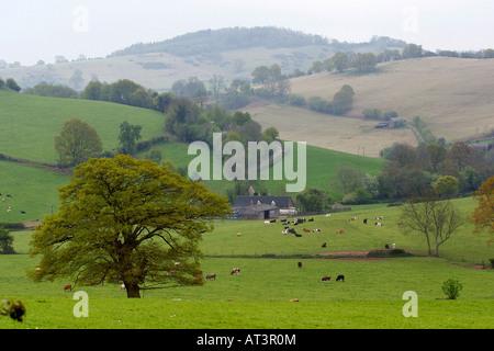 UK Herefordshire Garway Blick über Felder in Richtung Skenfrith - Stockfoto