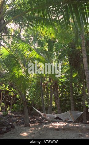 Junge Frau in Hängematte unter tropischen Palmen entspannen - Stockfoto