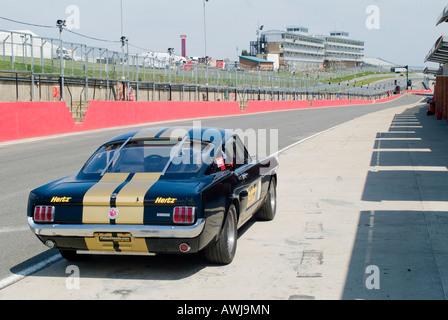 Rückansicht eines Shelby Mustang GT350H Autos auf einer Rennstrecke in Großbritannien - Stockfoto
