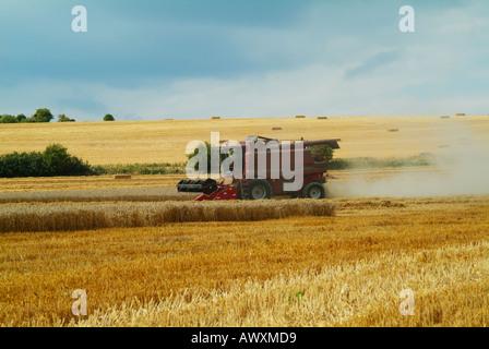 Ernte mit einem Mähdrescher Harvester Wiltshire England uk gb EU-Europa - Stockfoto