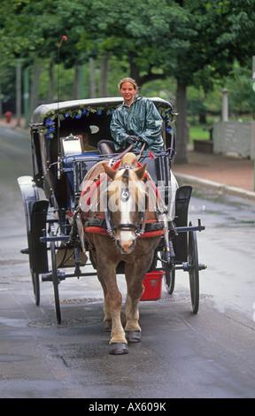 Eine Pferdekutsche bringt Besucher in der Nähe von Unabhängigkeit Hall National Historic Park im historischen Philadelphia - Stockfoto