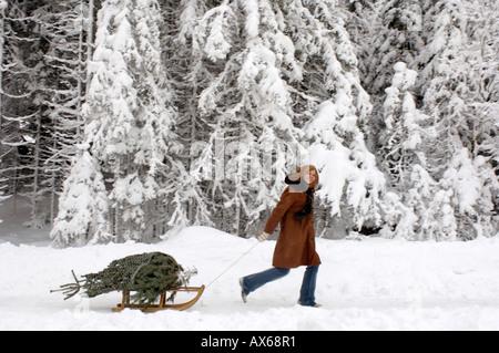 Junge Frau ziehen Schlitten mit Christbaum, smiling, Seitenansicht - Stockfoto