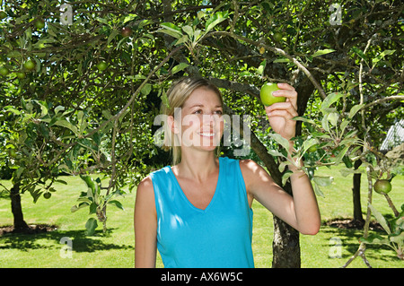 Frau einen Apfel pflücken - Stockfoto