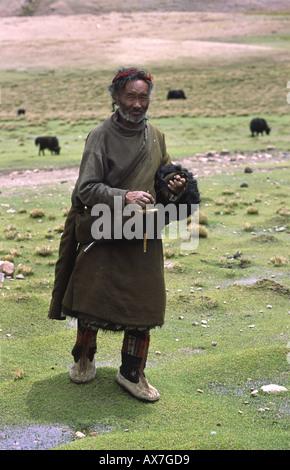 Alte tibetische Mann dreht, wie er seine Yak-Herde neigt. In der Nähe von Yangpachen, Tibet. - Stockfoto