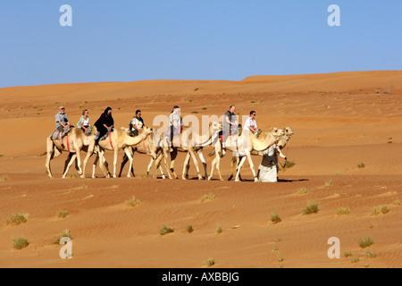 Touristen, Kamelreiten in Wahiba Sands (Ramlat al Wahaybah) in Oman. - Stockfoto