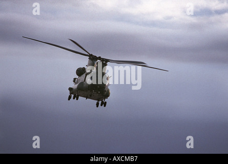 Ein Boeing Chinook-Hubschrauber der 18 Squadron RAF - Stockfoto