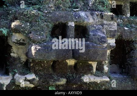 Lamanai, Maya Ruinen, Jaguarkopf - Stockfoto