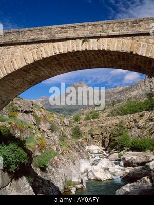 Die Ponte a'Ltu über den Fluss Golo, in der Nähe von Albertacce, Le Niolo, Haute Corse, Korsika, Frankreich. - Stockfoto
