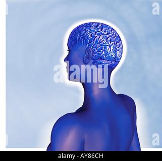 CGI-Klon Avatar Roboter Frauenkopf mit Gehirn mit künstlicher Intelligenz - Stockfoto