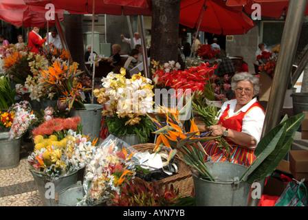 Blumenverkäuferin in den Mercado Dos Lavradores, Funchal, Madeira, Portugal. - Stockfoto