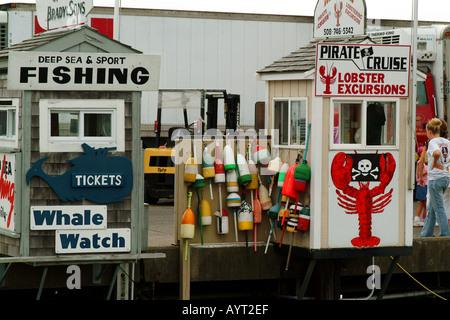 Whale watching Hummer Ausflüge und Sportangeln Cape Cod Plymouth Massachusetts USA - Stockfoto