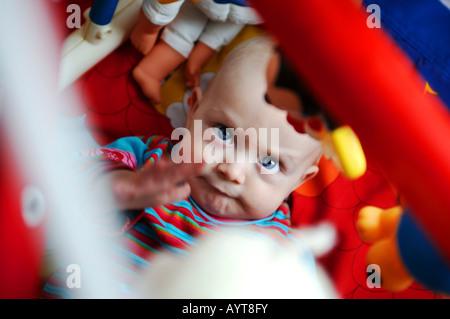 Sechs Monate altes Baby Boy spielen - Stockfoto