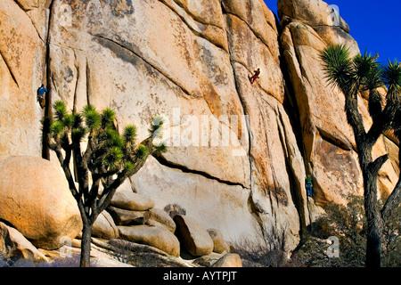 3 männliche Bergsteiger im Joshua Tree Nationalpark Kalifornien - Stockfoto