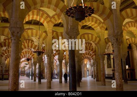Schiffen der Mezquita (-Moschee-Kathedrale), Córdoba, UNESCO-Weltkulturerbe, Provinz Córdoba, Andalusien (Andalucia) - Stockfoto
