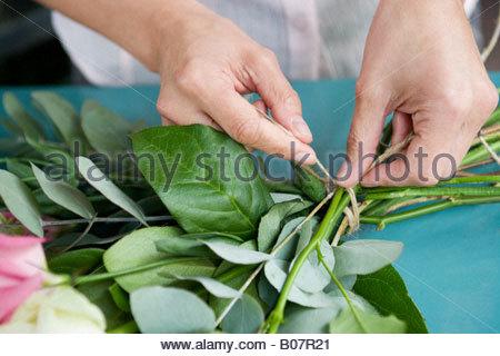 Frauenhand zusammenbinden ein Bouquet von rosa und weißen Rosen - Stockfoto