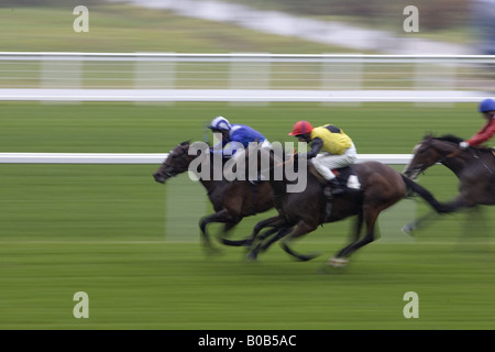 Pferderennen in Ascot Racecourse Berkshire England Großbritannien - Stockfoto