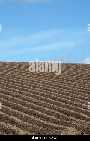 frisch gepflügten Feld vor einem blauen Himmel in der Grafschaft, Nord-Irland - Stockfoto