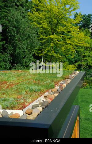 Grüne Sedum Dach Auf Erweiterung Eines Hauses In Surrey   Stockfoto