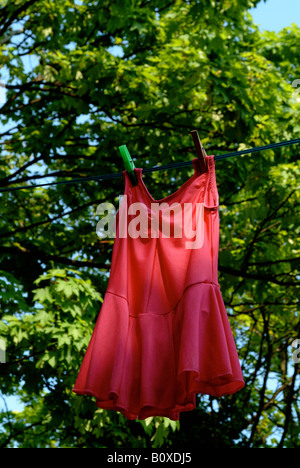 Ballett Kleid im Wind mit grünen Zweigen und Blättern hinter. - Stockfoto