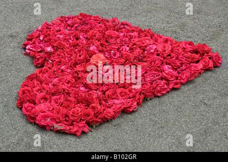 rote rose in herzform box stockfoto bild 25483709 alamy. Black Bedroom Furniture Sets. Home Design Ideas