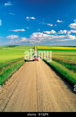 Landstraße durch Ackerland, Tiger Hügel, Manitoba, Kanada - Stockfoto