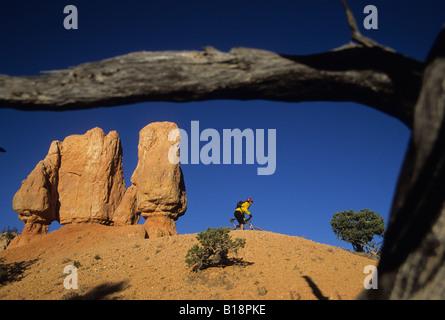 Ein Radfahrer, Klettern, Reiten, eine Spur auf Thunder Mountain im US-Bundesstaat Utah. - Stockfoto