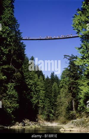 Capilano Suspension Bridge, North Vancouver, British Columbia, Kanada. - Stockfoto