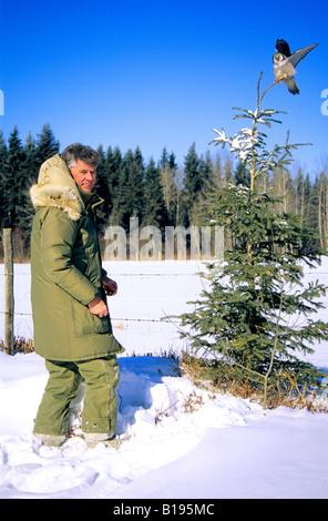 Mann und unvorsichtige nördlichen Sperbereule, Nord-Alberta, Kanada - Stockfoto