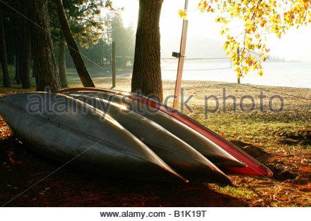 Vier Kanus Leuchten in der Morgensonne des Herbstes auf dem Ufer von Lake Coeur D Alene, Idaho. - Stockfoto