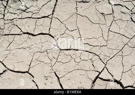 Ausgetrocknete Erde - Stockfoto
