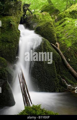 Stockghyll Kraft über Ambleside im Lake District, england - Stockfoto