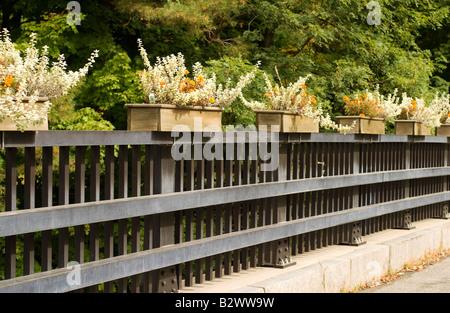 Blumenkästen schmücken eine Brücke in Williamstown Massachusetts Komplimente der lokalen Garten club - Stockfoto
