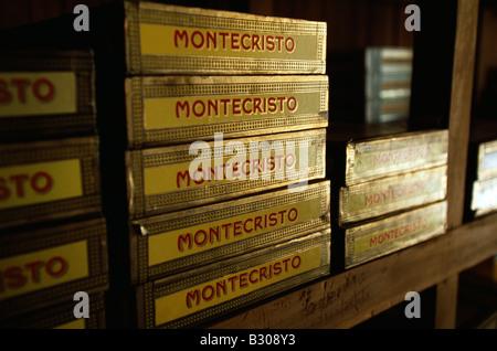 Boxen von Montecristo Zigarren im Humidor, Kuba Havanna Viejo, alte Havanna World Heritage Area, gestapelt - Stockfoto