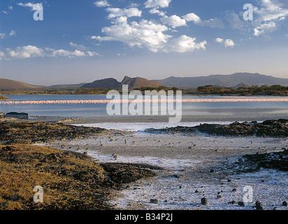 Kenia, Nakuru, Lake Baringo. Lake Baringo, eine flache, ephemere alkalischen See liegt in der Mulde des Gregory - Stockfoto