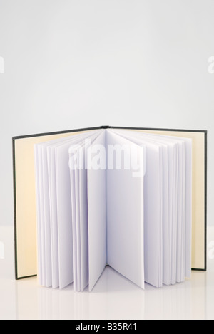Offenes Buch mit leeren Seiten, aufstehen, Nahaufnahme - Stockfoto