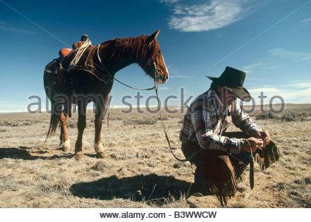 Cowboy, die Überprüfung der Erde, Wyoming, USA - Stockfoto
